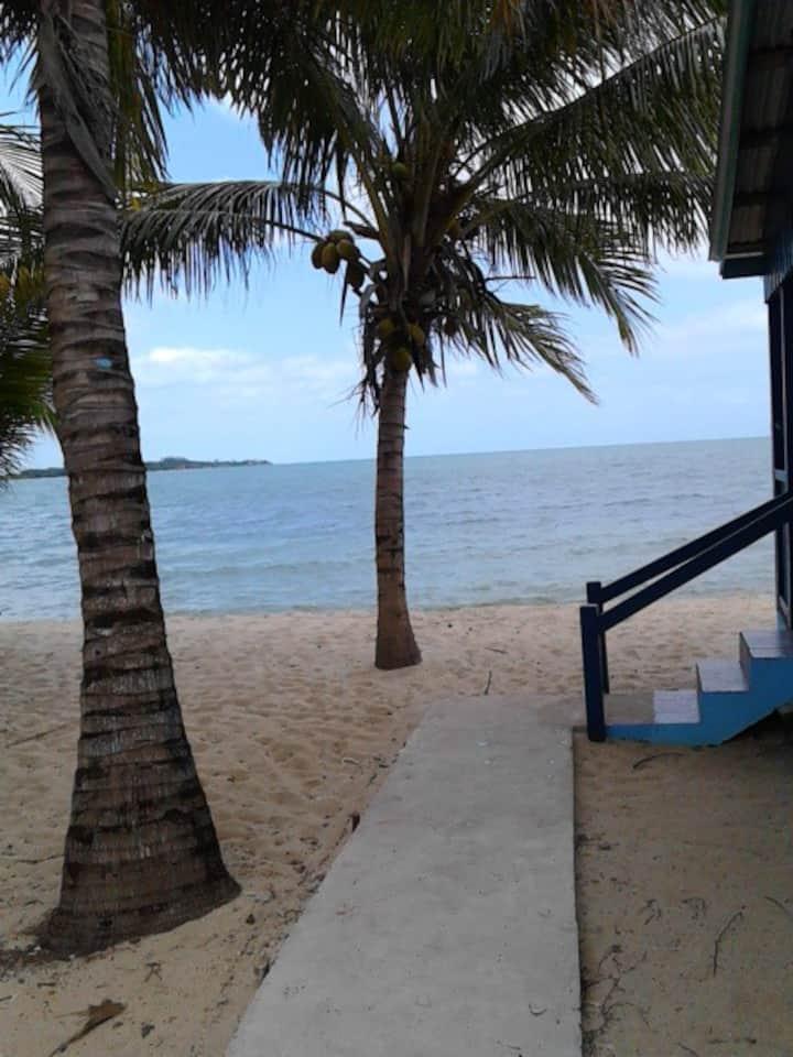 Tradewinds Beach Cabanas  Blue Dolphin