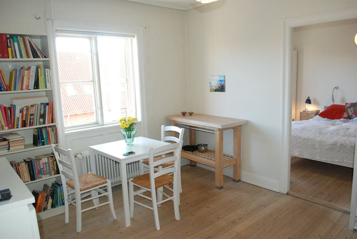 Great location  large rooms  bedroom + living room - Copenhague - Apartamento