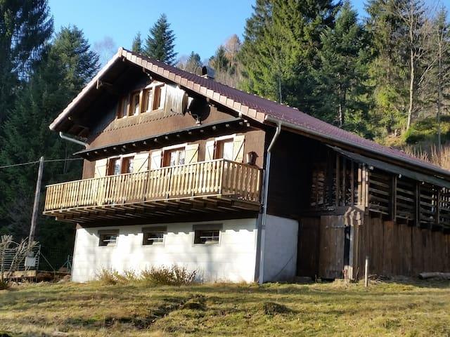 Charmant chalet au coeur des Hautes Vosges - Ventron - Hytte (i sveitsisk stil)