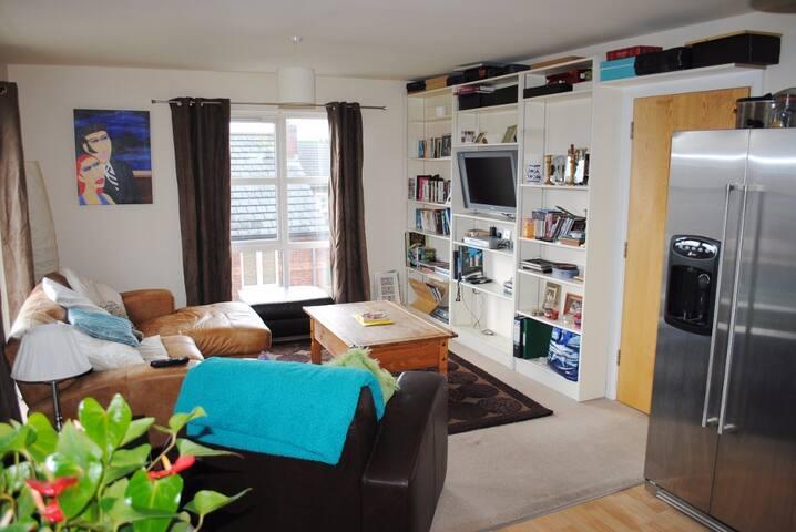 City centre apartment - Belfast - Pis