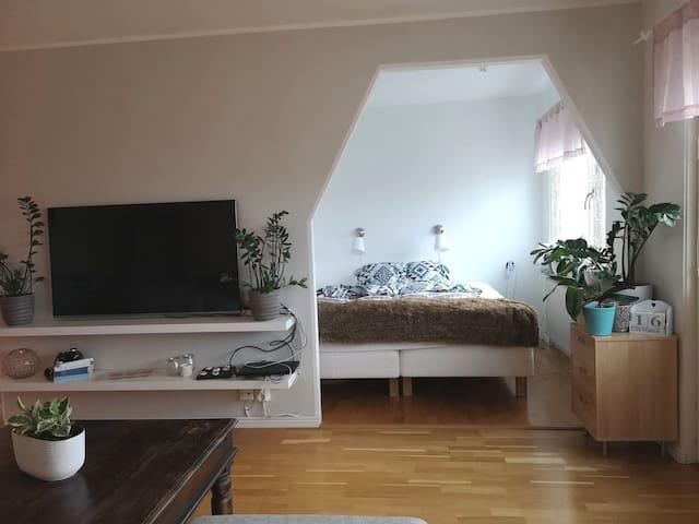 Cozy one bedroom apartment near metro