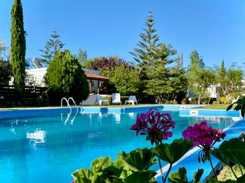 Crete Retreat, Lavender Villa with pool, Chania