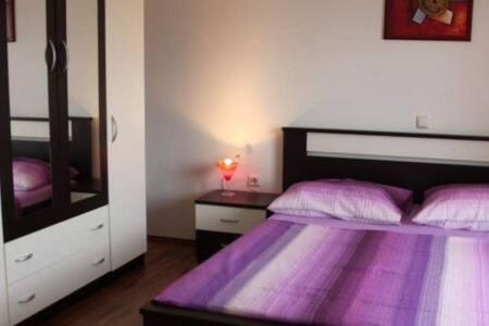 One bedroom apartment in Povljana - Povljana