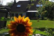 Gemütliches Zimmer, zwei Einzelbetten, Natur& Seen