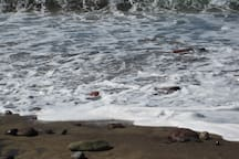 Undertow - Turas beach. I exhale