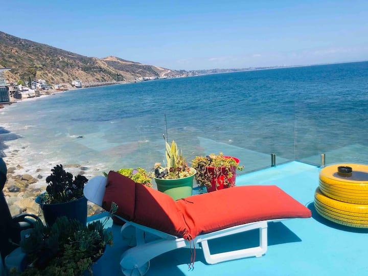 An Ocean  Paradise