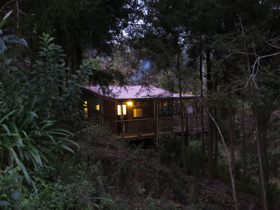Dream forest eco cottage cabins for rent in waipapa for Piani eco cottage