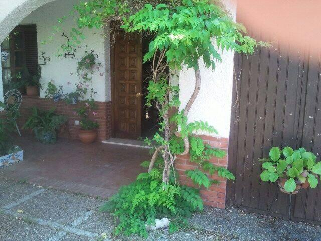 Casa familiar en la Vega de Granada - Granada  - House