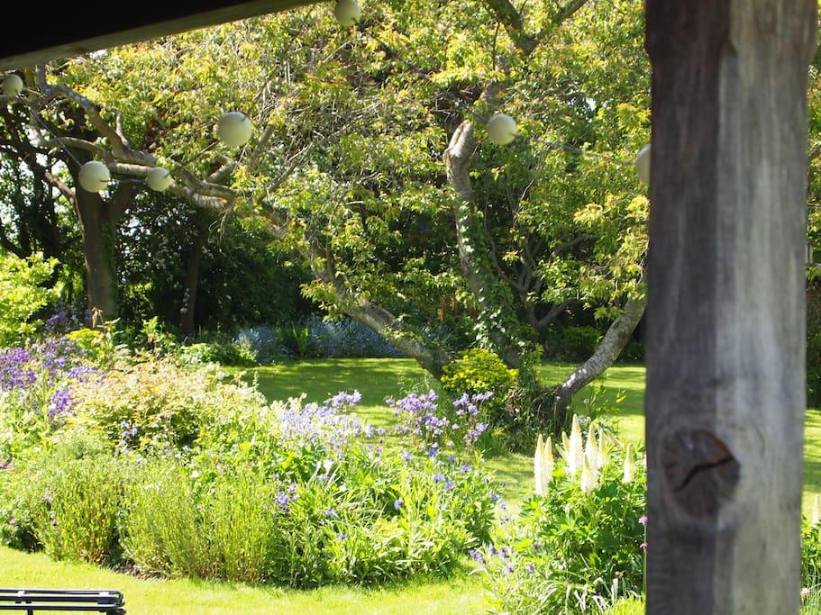 Garden view in June  from verandah