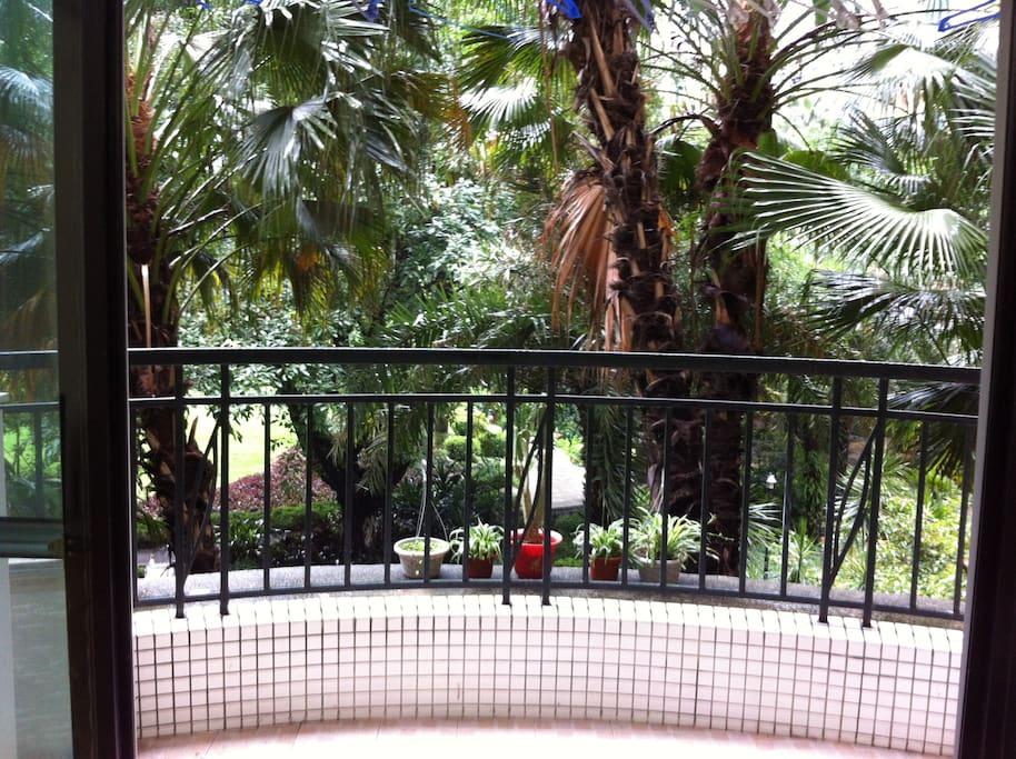 独立阳台,正对着中央花园,绿木成萌,南向阳台,保证你清凉一夏
