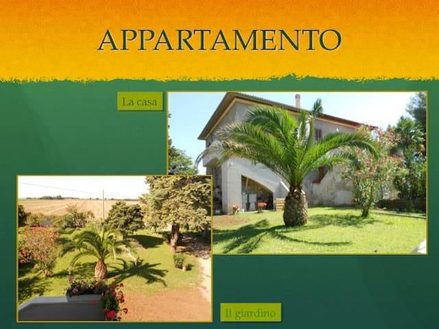 CASA IN CAMPAGNA TRA MARE E LAGO  - Ischia di Castro - Apartment