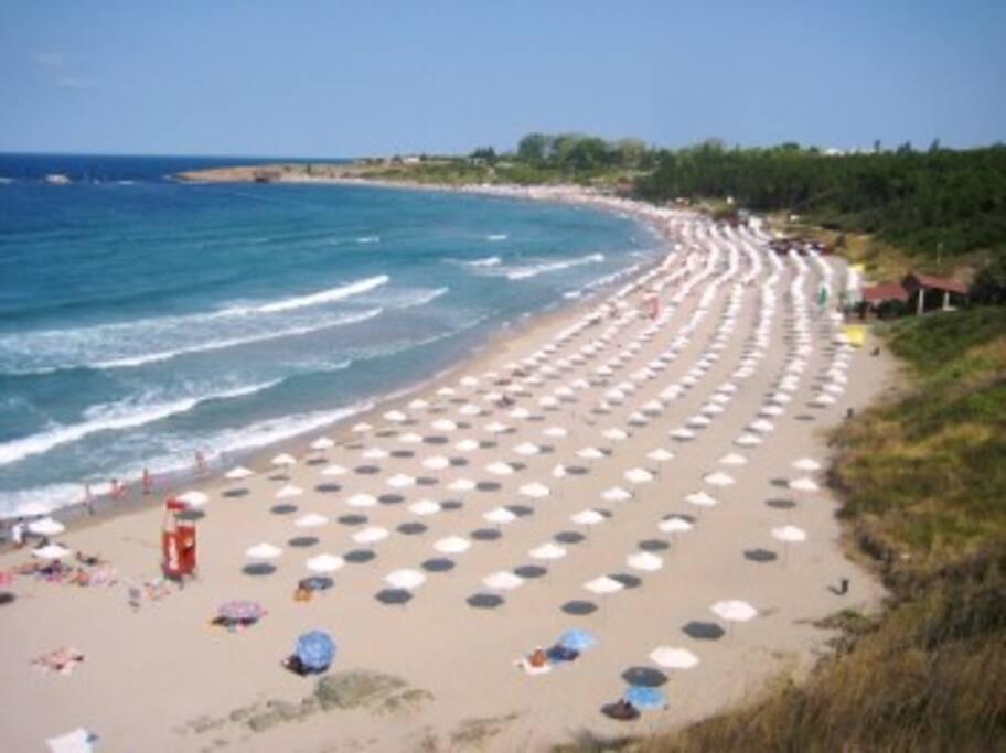 Magnifique plage de 2km