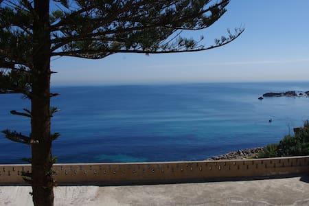 Coin de paradis zen du côté d'Alger