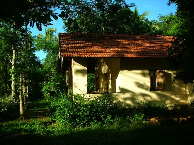 Charming Cottage on a farm in tropical Kerala