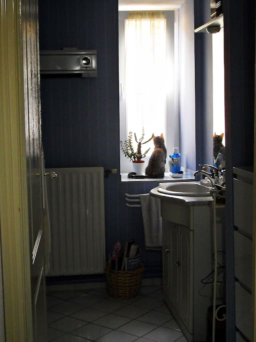 La salle de bain douche et wc en face de votre chambre