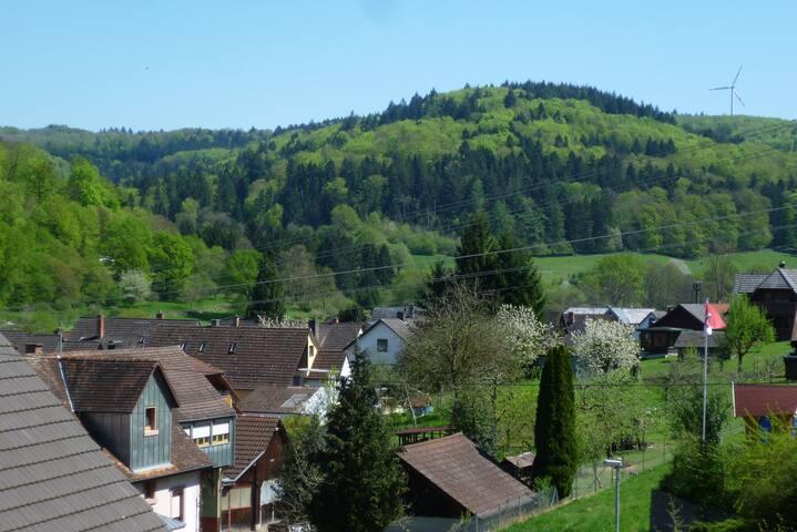 115sqm 12+ P 3.5 BR Luxury Retreat - Lahr/Schwarzwald - Apartment