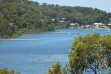 Delightful Hardys Bay, a 20 min bushwalk away