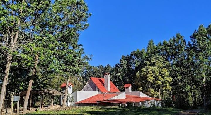 Nilgiri Hill kookal cottage 1