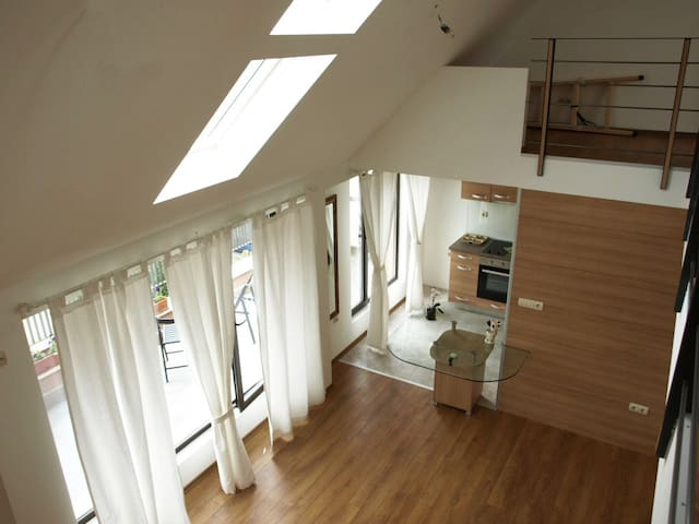 Great located architect's penthouse apartment - Plovdiv - Apartment