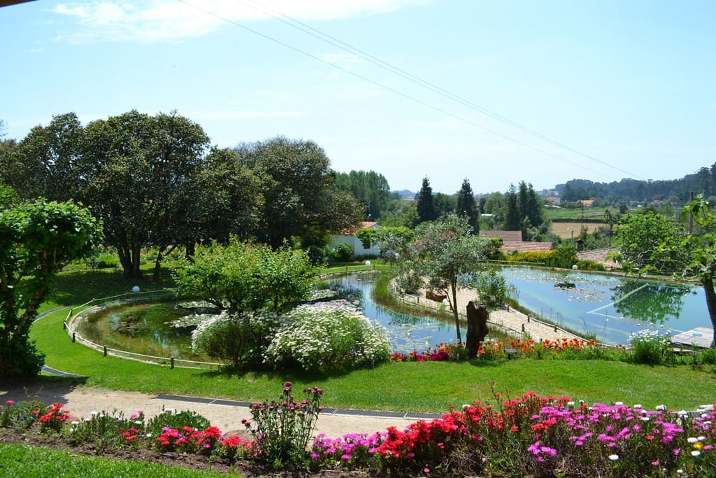 Garden and swimming pool view