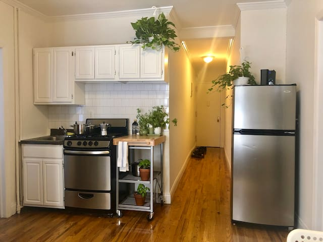 A Beautiful Williamsburg Apartment Available Today