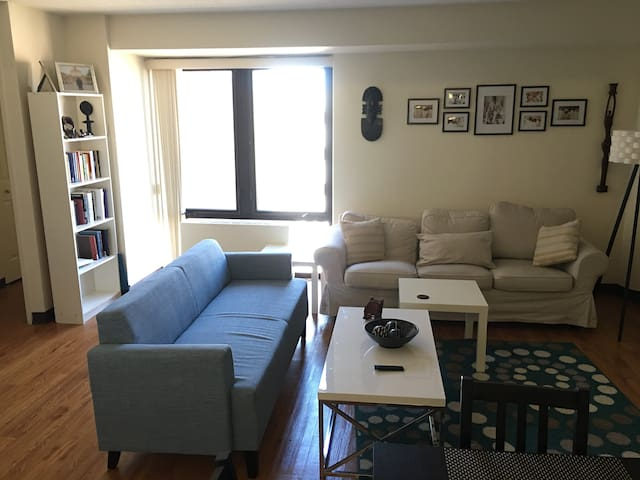 Upscale Apt in heart of downtown Providence
