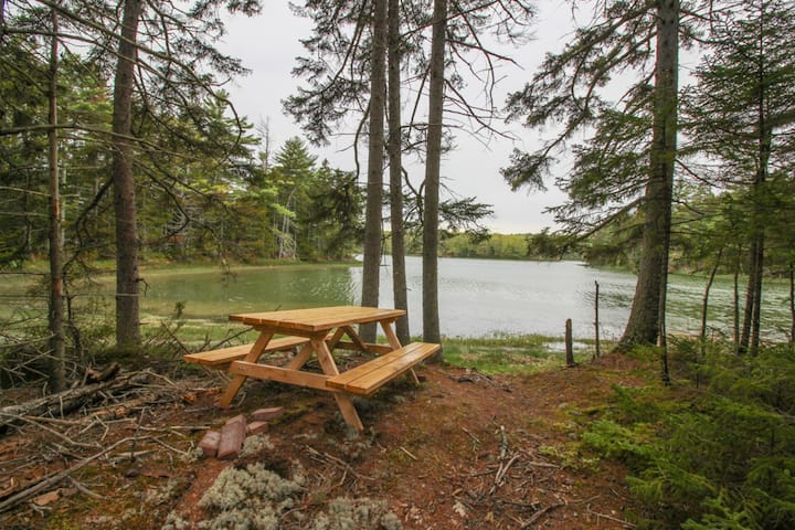 Private riverfront retreat w/ foosball & a firepit, overlooks a nature preserve!