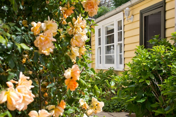 Cosy Rose Cottage - Parkdale