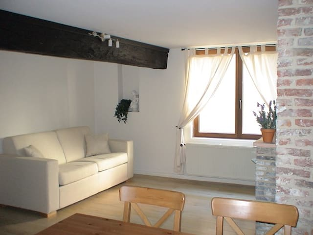 Appartement 1 chambre à 50 m de la Grand-Place - Bruksela - Apartament
