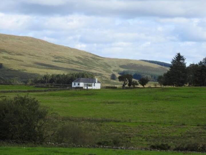 Mark Cottage