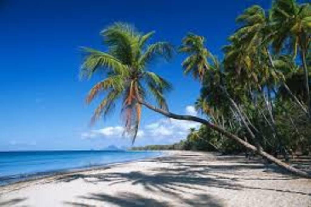 plage des salines à 5 minutes