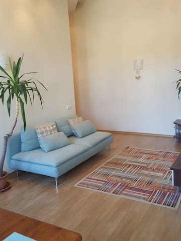 Cosy apartment in the heart of old town in Kaunas