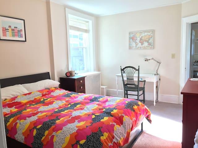 Cozy academic apartment in East Rock - New Haven - Lägenhet