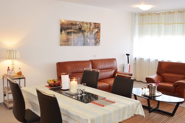 Mulhouse Bel Appartement complet, 4 P/ 2 Lits