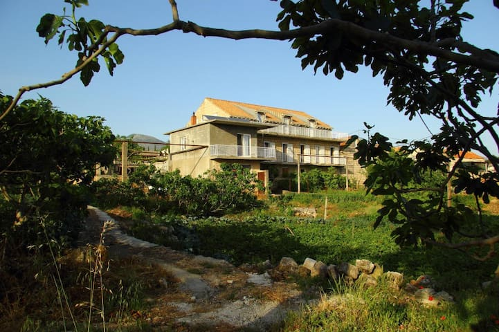 Arkadia, charming rural property