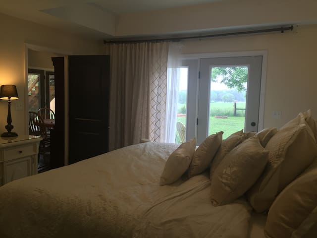 Private Lower Level King Bed/Patio - Simpsonville - Ev