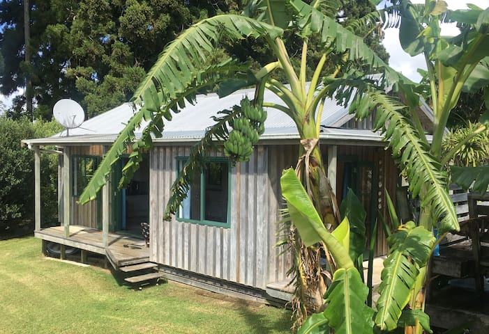 Kidman Whare at the end of Darwin