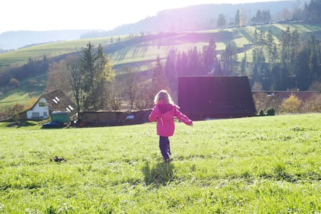 Guest room in the Black Forest - family-friendly - Baiersbronn - Wohnung