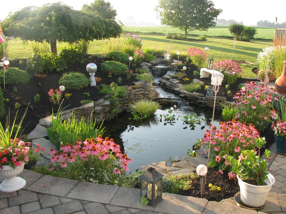 Pond/Patio area for relaxing