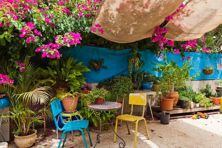 Unique house and garden in Jaffa - Tel Aviv-Yafo - House