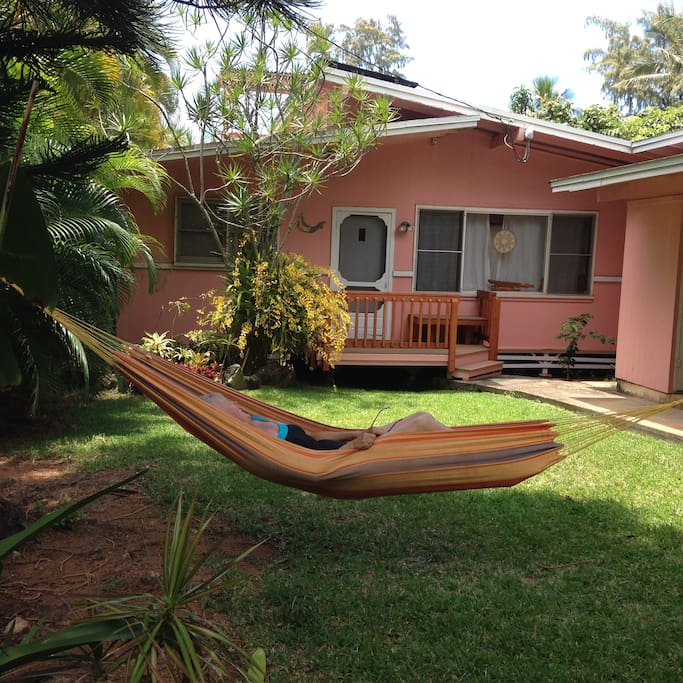 Hammock up in front of the house