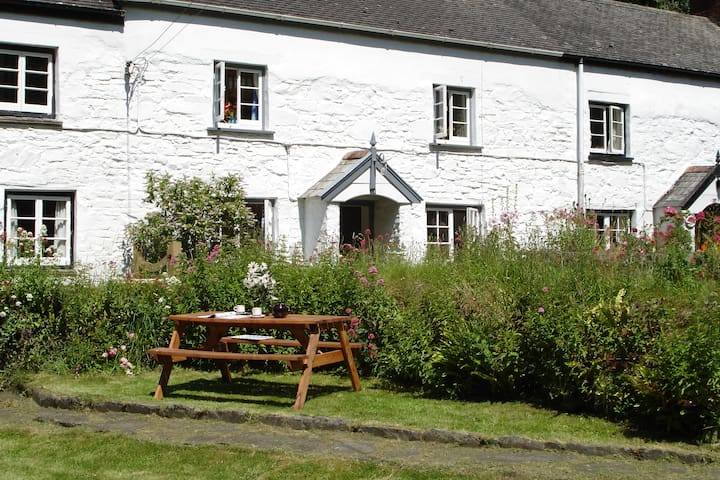Melinda's Cottage, Bucks Mills, - Buck's Mills - Huis
