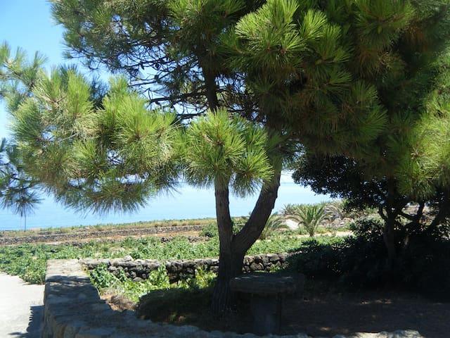 A pochi passi dal mare (2)... - Pantelleria - Lägenhet