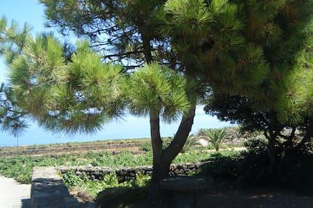 A pochi passi dal mare... - Pantelleria