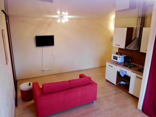 Уютная квартира с дизайнерским ремонтом - Izhevsk - Apartemen