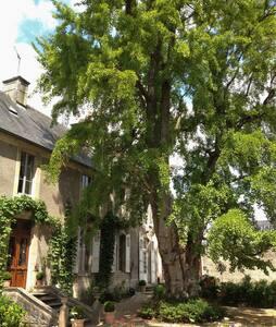 """Suite d'hôtes """"Le grand arbre""""  - Bayeux"""