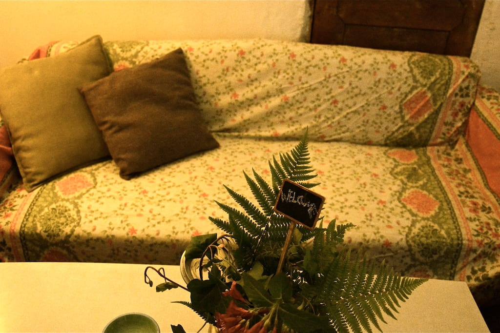 cosy couch with gardenview
