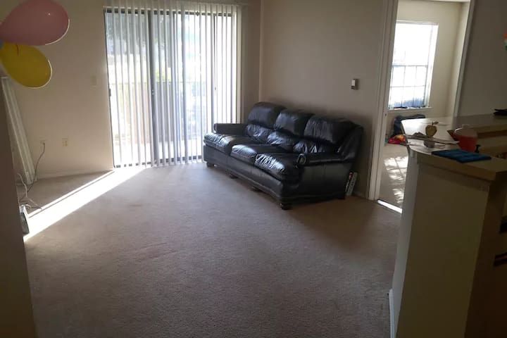 Amazing, clean, safe, and cheap shared apartment. - Richardson - Daire