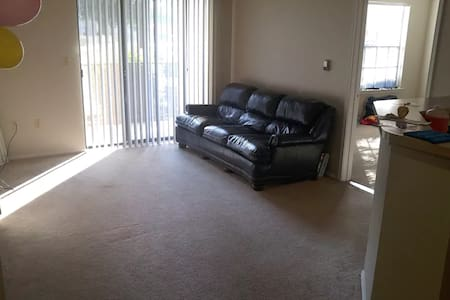 Amazing, clean, safe, and cheap shared apartment. - Richardson