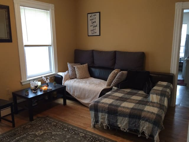Cozy, Bright room in the heart of Cambridge! - Cambridge